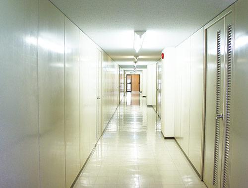 物件写真:廊下